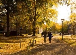 Autumn in Lund. Picture by Hao Wu