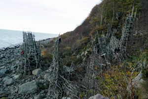 The driftwood towers of Nimis